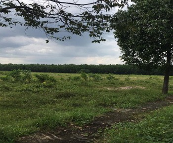 Land for sale to build factories